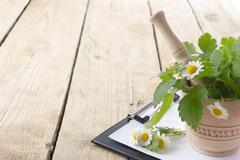 Fresh herb and medical clipboard on wooden table. Alternative medicine concept - stock photo