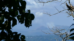Masaya volcano View from the Mombacho Volcano Nature Reserve Stock Footage