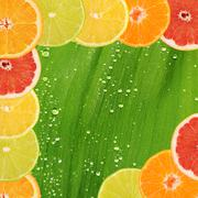 Allsorts from a citrus fruit close-up Stock Photos