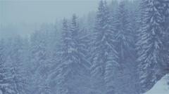 Heavy snowfall in slow motion of huge pines in mountains Stock Footage