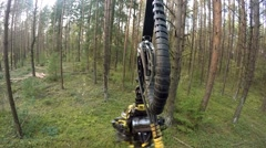 Forest Harvester in action - cutting down tree. Stock Footage