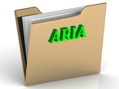 ARIA- bright green letters on gold paperwork folder on a white background - stock illustration