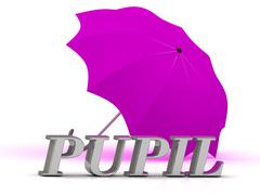 PUPIL- inscription of silver letters and umbrella on white background.. Stock Illustration