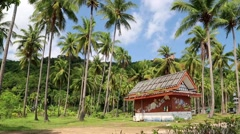 Little house amongst palms on the Koh-Chang island, Thailand Stock Footage