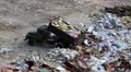 Car unloads garbage in a landfill HD Footage