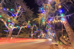 Famous Christmas Tree Lane Stock Photos