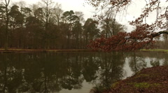 The Lake and Tree Reflection on Water - stock footage