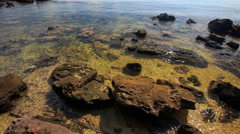 Stones on Sand under Transparent Shallow Azure Sea Stock Footage