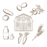 Farming and agriculture sketched icons Stock Illustration