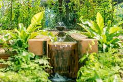 Artificial waterfall in botanic garden - stock photo