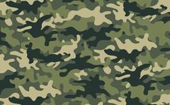 Camouflage Stock Illustration