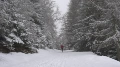 Woman Jogging Through Snowy Alpine Forest. Stock Footage