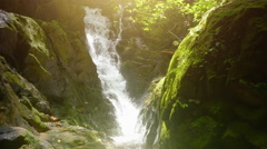 Sunlight shines in wild forest over small waterfall falling from wet mossy rocks Stock Footage