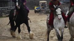Many horsemen wearing medieval royal servant suits taming pedigree horses Stock Footage