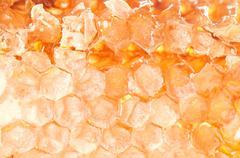 Yellow honeycomb slice - stock photo