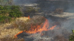 Flames consume dry grass and berry vines at the edge of charred ground Stock Footage