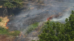 A blackened branch lies on charred ground as flames nibble at dry grass nearby Stock Footage