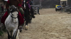 Group of horsemen in medieval suits riding pedigree horses at gallop, royal army Stock Footage