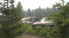Auto junkyard in the forest, montage #1 Stock Footage