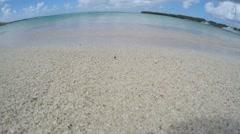Closeup of caribbean sandy beach, fisheye Stock Footage