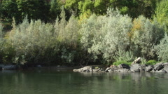Drifting right past streamside rocks and bushes along the Rogue River, Oregon Stock Footage