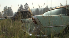 Auto junkyard in the forest, handheld #1 Stock Footage