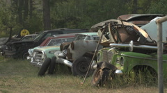 Auto junkyard in the forest, long lens Stock Footage