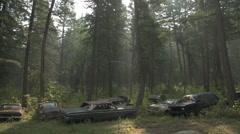 Auto junkyard forest, atmospheric, wide shot Stock Footage
