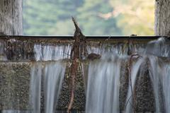 Close Up of Dam Spillway Stock Photos