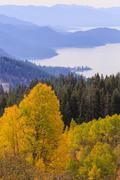 Aspen, Lake Tahoe Stock Photos