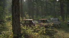 Auto junkyard forest, atmospheric, medium shot Stock Footage