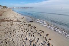 Empty beach Playa den Bossa Stock Photos