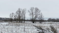 Field with grass and snow away dead Russia trees winter landscape Stock Footage
