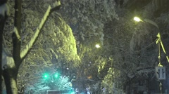 Snow falling on trees and street lamps at night Stock Footage