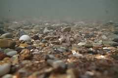 Underwater wave in stone seabed Stock Footage