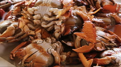 Seafood at the fish market Stock Footage
