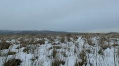 Snowy Tundra - stock footage