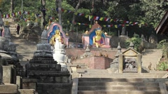 Two statues of Buddhas on the rise in the Monkey Temple Stock Footage