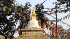 Stupa and monkeys at sunset Stock Footage