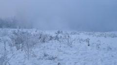 Misty winter landscape in blue - stock footage