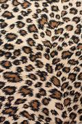 Leopard patterned fabric - stock photo