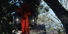 Lanterns decorated with red bows beneath trees Stock Footage