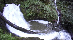 Waterfall in California Forest Stock Footage
