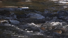 Rapids in a partially frozen stream Stock Footage