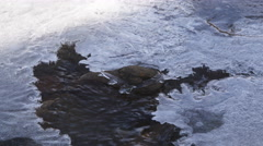 Close-up crust of ice above the current of a stream - stock footage