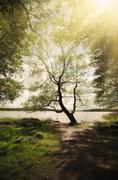 Scandinavian beautiful landscape - stock photo