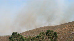 Smoke from a wildfire rises over a brushy hill, wind-blown trees in foreground - stock footage