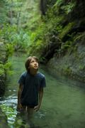 Boy wading in stream, looking up in awe Stock Photos