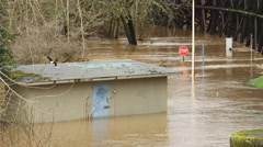 Floodwater partway up a park storage shed near a stop sign in the muddy current - stock footage
