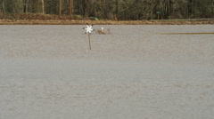An ornamental windmill whirls surrounded by a wide expanse of muddy floodwater Stock Footage